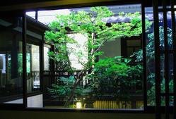 店内から観る日本庭園
