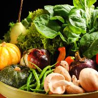 新鮮な野菜も魅力。地元奈良の『大和野菜』を常時仕入れています