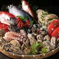 旬の鮮魚を直送で仕入れています。お造りや焼物で