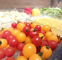 新鮮野菜を思う存分お楽しみ下さい。