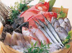 新鮮お魚をお造りはもちろん、煮付け・塩焼きでどうぞ!!