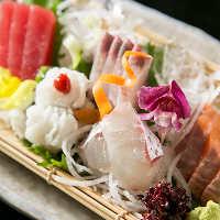 〈お造り〉 魚は藁焼きだけでなく刺身でも味わえます