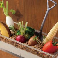 食べれる土のファーマーズサラダ