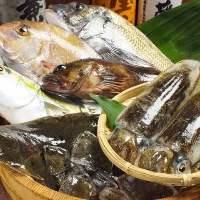 漁師直送&毎日仕入れの新鮮で安全な牡蠣が色々楽しめる!