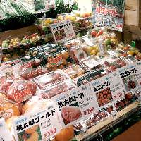 滋賀県内農家が当日出荷した野菜がその日に届きます