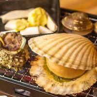 サザエやホタテなどの貝を浜焼きで豪快にお楽しみください!