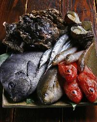 《旬の美味》 鮮度抜群な魚介、季節野菜は旨みそのままにご提供