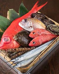 近海の鮮魚も美味!お造りや煮つけでお楽しみください。