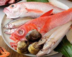 自慢の鮮魚を実乃里では こんなに美味しく提供します☆
