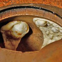 全てのナンは壷窯型オーブン「タンドール」で焼き上げます。