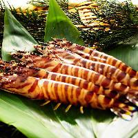 活車海老、活帆立貝柱、活伊勢海老などとっておきの新鮮魚介も