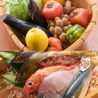 新鮮な魚介類や旬のお野菜も豊富にご用意!お造りも旨い!