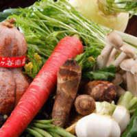 お肉はもちろん、京野菜の逸品も◎京都ならではの焼肉宴会をぜひ