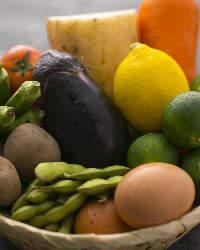 〈季節野菜〉 京都から届く旬野菜は梅田店限定メニューでご堪能