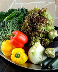 【厳選野菜】和歌山産野菜を 中心とした厳選食材使用!