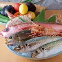 【新鮮魚介】 漁師から直接買い付けるから、安くて新鮮で美味!