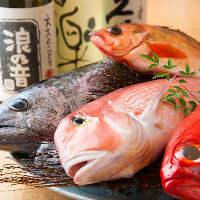 市場直送の新鮮魚介が絶品!匠の技が、その魅力を引き出します