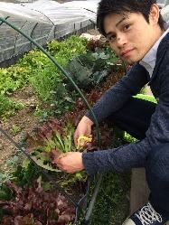 新鮮な野菜を使った色々なお料理をお楽しみください♪