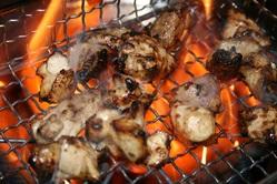 宮崎産 地鶏もも炙り焼