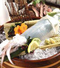 漁港直送で毎日仕入れる旬の海鮮をお値打ち価格で豪快に提供!