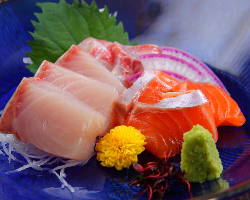 舞鶴漁港直送の旬の鮮魚