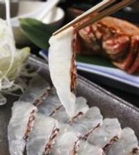 毎朝仕入れる鮮魚を中心に色々な 旬の食材をご用意しております
