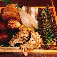 秋の食材 きのこや栗 子持ちの小鮎など