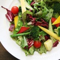採れたての野菜は心と身体を癒してくれる。