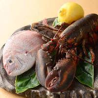 《生簀の魚》 活オマール海老、アワビなど新鮮な海鮮もご用意
