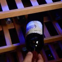 《ワイン》 世界各国から取り揃えた豊富なワインをお食事と共に