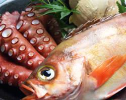 新鮮なお魚で美味しいお料理を。