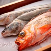 【海の幸】 産地直送の新鮮な魚介をふんだんに使用したお料理
