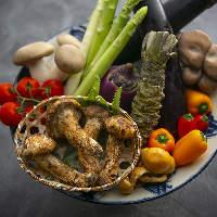漁港直送の鮮魚や産直野菜など料理人が認める素材を使った料理。