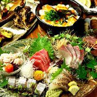 飲み放題付き宴会は3980円(税抜)~!水炊きやお鍋もおすすめ♪