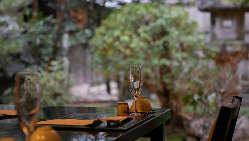 四季折々旬の料理をお愉しみ下さい