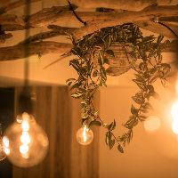 天井の流木とエジソンランプの温かみがポイントのインテリア。