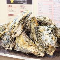 京橋でお腹いっぱい牡蠣を食べられるのはここだけ!