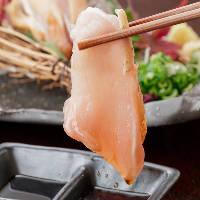 【新鮮地鶏】 鶏本来が持つ深い味とコクを感じるタタキも人気