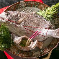 大きな真鯛など、慶びのお食事会に最適なお料理や食材も多数