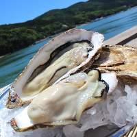 濃厚な旨味をたっぷり満喫!「生牡蠣」で磯の香りも楽しんで◎