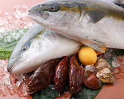 北海道~九州まで 各地の美味しい魚を仕入れています!