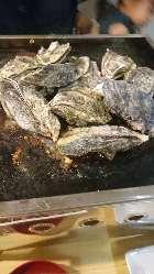 濃厚でクリーミー・旨味たっぷり!鮮度抜群の旬牡蠣をご提供