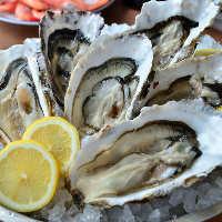 東北地方を中心に厳選入荷する自慢の「牡蠣」は多彩な調理法で。