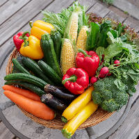 地元兵庫県の農家より毎日届く採れたて新鮮の野菜をたっぷり使用
