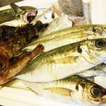 地元の港で仕入れた新鮮な魚介をリーズナブルな価格でご提供!