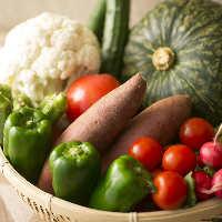 みずみずしく新鮮な自家農園野菜を中心に使用しております