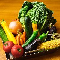 旬の新鮮野菜は時期ごとに産地を厳選して仕入れております