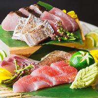 新鮮なお魚は毎日入荷!本日のおすすめメニューも要チェック!
