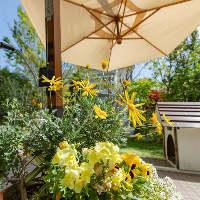 ◆:優美な空間:◆ 店内から見える四季折々の華やかな植物たち♪