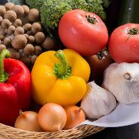 ◆:旬の食材:◆ 季節感を大切にした料理の数々を提供しています